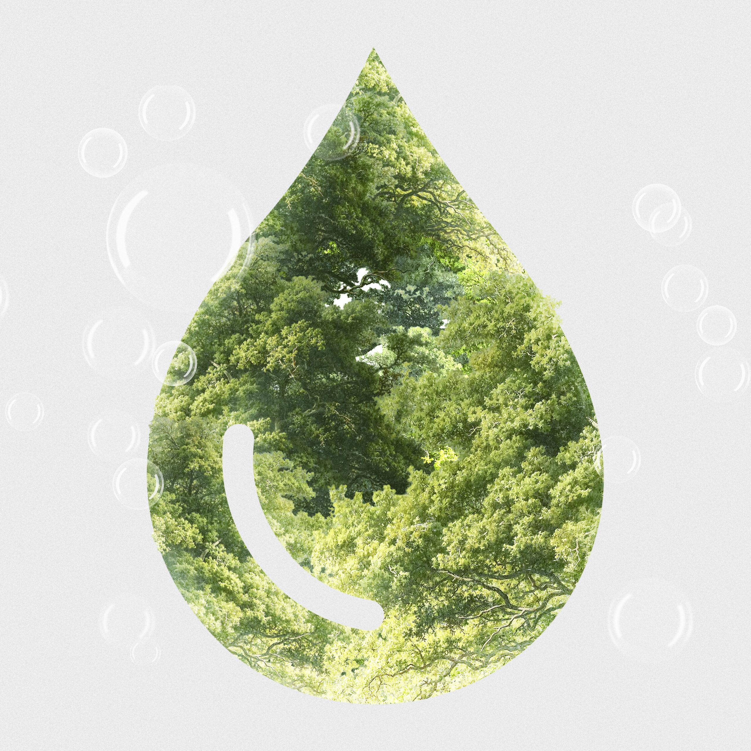 محطة معالجة مياه الشرب