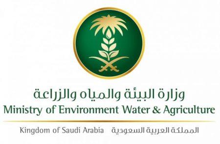 خدمات المياه